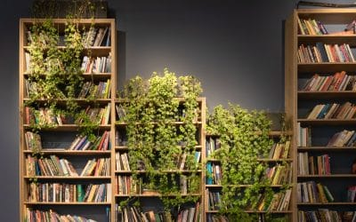 10 clever ways to style to your bookcase with plants